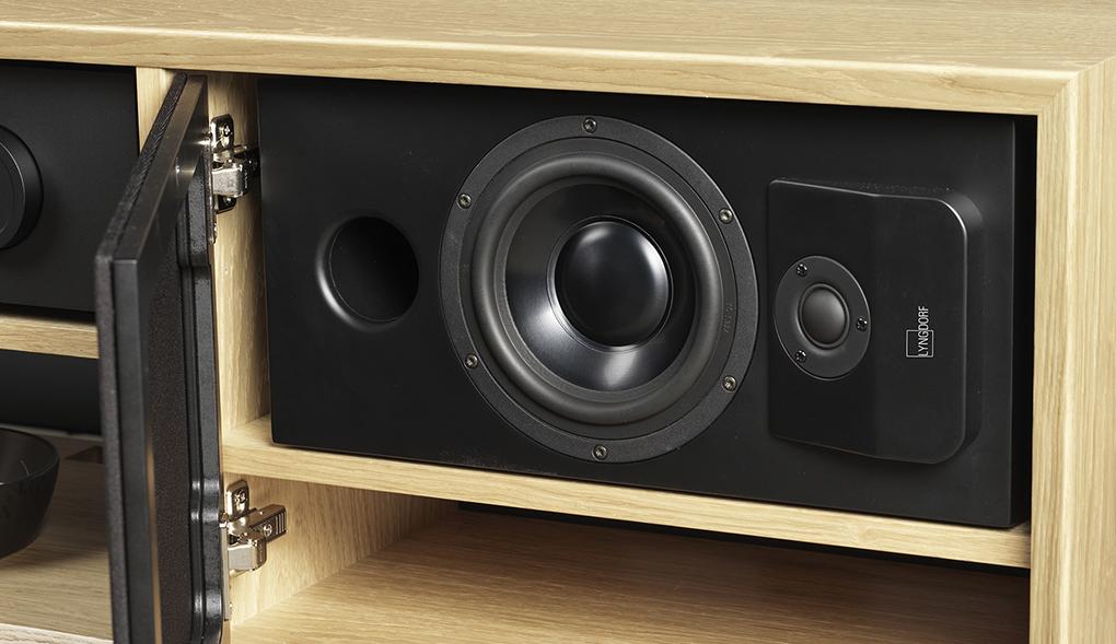 New Lyngdorf CS-1 Speaker